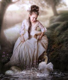 "Swans:  #Swan ~ ""Friends,"" by CindysArt, at deviantART."