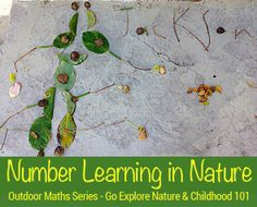 Math Games - Number learning with nature - Counting {GoExploreNature.com on Childhood101}