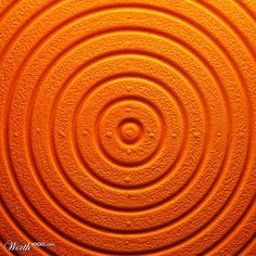 Color Naranja - Orange!!! Circles