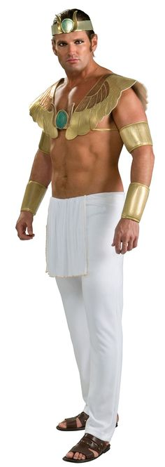 Click Image Above To Buy Pharoah Adult Costume - Egyptian Costumes  sc 1 st  Pinterest & Halloween 2009 - DIY Tutorials - Egyptian Pharaohs Themed Halloween ...