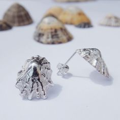 Handmade Sterling Silver Limpet Studs / by JasmineBowdenShop