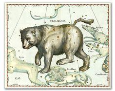 Ursa Major (Big Bear) Constellation, vintage celestial map printed on parchment paper, Nursery art, Nursery room decor. Buy 3 and get 1 FREE