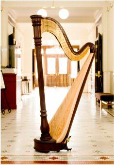 Florida Harpist Pedal Harp