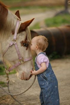 I Love You Horsey  #horse #horses #horselover     http://www.islandcowgirl.com