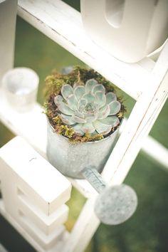 Ladder Decor Succulent Pots Watering Can Beautiful Summer Garden Party Wedding http://divinedayphotography.com/