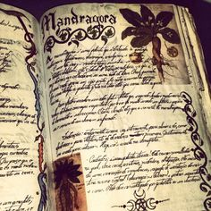 Find images and videos about witch, witchcraft and medieval on We Heart It - the app to get lost in what you love. Traditional Witchcraft, Season Of The Witch, Wiccan Spells, Knowledge And Wisdom, Field Guide, Book Of Shadows, Spelling, Book Art, Spirituality