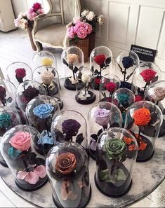 grafika rose, flowers, and colors