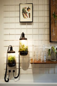 self sustaining plant in a glass jar with lamp in the interior of salad bar SLA in Amsterdam, the Netherlands