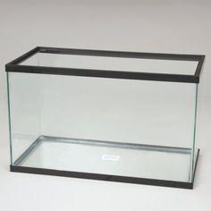 Aquarium Tank, Glass, 29 Gal Carolina http://www.amazon.com/dp/B005VDO9B2/ref=cm_sw_r_pi_dp_G4Xmub1AGECA7