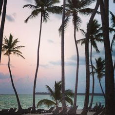 Punta Cana, Dominican Republic at sunset. Thinking about going for our vacation.