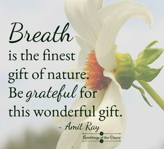 Breath is the finest gift of nature. Be grateful for this wonderful gift. (I have asthma, so I do!)