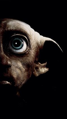 Dobby has no master Dobby is a free elf