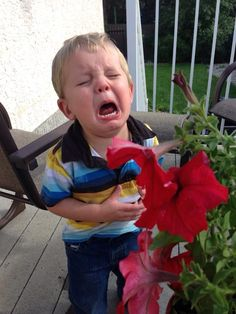 "Reasons my kid is crying ""I planted a flower in the pot he gave me."""