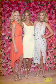 Lindsay Ellingson, Erin Heatherton, and Toni Garrn {vs angels}