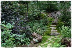 Luonnonkiviportaat Scandinavian Cottage, Woodland Garden, Back Gardens, Rowan, Outdoor Living, Gardening, Landscape, Places, Flowers