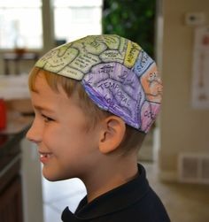 A school of fish: Brain hats (cerebral cortex) Human Body Crafts, Human Body Science, Human Body Activities, Senses Activities, Preschool Science Activities, Measurement Activities, Human Body Unit, Human Body Systems, Science Experiments Kids