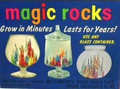 Magic Rocks - loved these!  More pics and time lapse video at my blog.