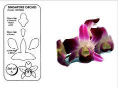 Jem Singapore Orchid cutters NEW gum paste cake decorating supplies fondant