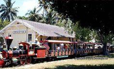 The train ride at Crandon Park Zoo.