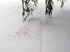 "Tim Knowles - Tree Drawings (2006)    Artist's statement:    ""A series of drawings produced using drawing implements attached to the tips of tree branches, the wind's effects on the tree recorded on paper.     Like signatures each drawing reveals the different qualities and characteristics of each tree."""
