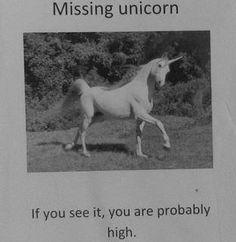 Unicorns // Funny