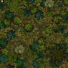 Dense Forest Battle Map 17