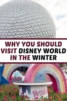 5 Reasons to Visit Disney World in January and February // WDW Basics // Cool and dry weather, low crowd levels, and the lowest resort prices of the year are reasons visiting Disney World in January and February is the best time of the year for a Disney trip! // PIN THIS and TAP TO READ #disneyinjanuary #disneyinfebruary #disneyworld Disney World Rides, Disney World Hotels, Disney World Vacation Planning, Disney World Food, Walt Disney World Vacations, Disney Planning, Best Vacations, Disney World Christmas, Orlando Theme Parks