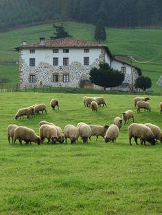 Ecomuseo del Pastoreo de Euskal Herria http://www.turistarth.com/l-emozione-del-paesaggio/49-la-soluzione-ecomuseale