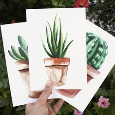 "Harp Design Co. (@harpdesignco) on Instagram: ""Just in time for Spring-our succulent prints are now available online! They're handmade by a local…"""