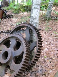 Gears! I want