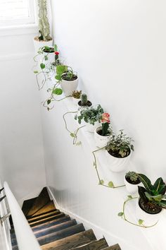 love the way this row of plants (in pots that match each other and the wall) livens up a skinny ledge.