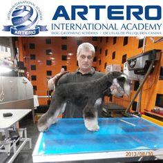 Filipe Costa Peluquero Canino Profesional desde 1987. Ha conseguido varias medallas en distintos campeonatos de Peluquería Canina en Portugal, Alemania y  España.  2012 Vice-Presidente AGP (Associação Groomers de Portugal).  Infórmate de nuestros cursos y seminarios clickando esta imagen