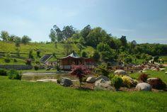 Grădina Botanică din Jibou, printre cele mai frumoase grădini botanice din Europa