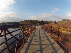 Johnson Lake Trail in Raleigh, NC