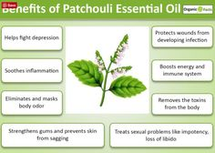 Patchouli Oil is almost unheard of essential oil.  The health benefits are numerous of this little-known plant oil!  It has been known to help in the treatment of eczema, dermatitis, psoriasis and sores. It provides relief from constipation, and can be used as an temporary antidote or salve against insect bites. These peripheral benefits are closely related to one or more of the other qualities we already explained…