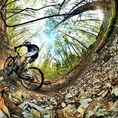 Mountain Biking in Berlin is so much fun you can't believe it.  Mountain Biken in Berlin ist so abwechslungsreich. Es ist kaum zu glauben.  #Ridemore #Rideyourbike  #konstructive.de #mountainbike #tailormade #allmountain #cyclingshots #nice #mtb #outdoors #nature #cycling #outdoors #cyclinglife #sunny #mtblove #allmountainstyle #blau #ilovemybike #orange #womenscycling #mountainbiking #fitgirls #downhill #bikepaint #cyclechicks #fahrrad #igersberlin #igerscycling #igersmtb