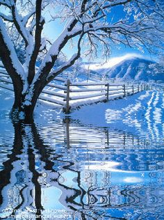 Water Animations - Oceans to Angels - Image 2 - Tranquil Waters - Fantasy Art