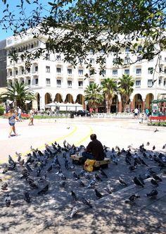 Pigeons at Aristotle Square, Thessaloniki, Macedonia Greece Macedonia Greece, Athens Greece, Greek House, Thessaloniki, Greece Travel, Nymph, Greek Islands, European Travel, Dolores Park