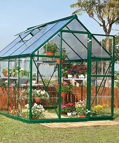 Look at this Forest Green 8' x 6' Greenhouse on #zulily today!