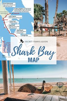 Get your map of the trip to Western Australia Shark Bay Find out where to go and what to do …. Get your map of the trip to Western Australia Shark Bay Find out where to go and what to do …. Visit Australia, Australia Travel, Western Australia, Queensland Australia, Australia Holidays, Brisbane Queensland, Australian Road Trip, Australian Beach, Fiji