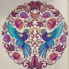 Johanna Basford Coloring Book Adult Books Colouring Secret Gardens Garden Colored Pencil Tutorial