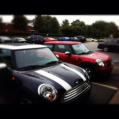 Wet Mini Coopers in the morning