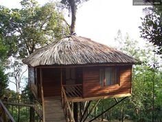 Boutique Tented Camp Kerala   Unique tree houses Kerala, India   Luxury tents Kerala