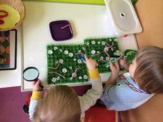 Peuters thema wormpjes: wormpjes vangen in het gras met pincetten en vergrootglas Preschool theme worms: catching worms fine motor skills activity Www.jufanneleen.com