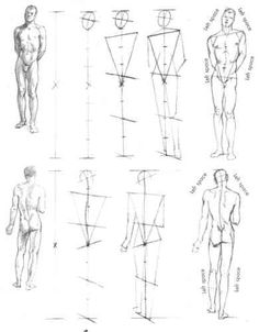 Willy Pogony's 8 head constellation drawing (with contrapposto ) to set the simplified angles from the markers at great trochanter (in line with pubic bone ) up through the tensor fasciae latae , gluteus medius and finally with the external obliques back to the rib cage line.
