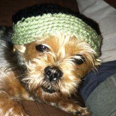 Pet crocheted  hat