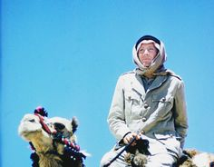 Peter O'Toole on the set of Lawrence of Arabia, 1963 Peter O'toole, Lawrence Of Arabia, Hollywood Boulevard, Canada Goose Jackets, Behind The Scenes, Winter Jackets, Lady, Funny, Movies