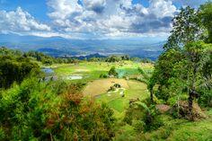 5 Kegiatan Liburan Terbaik di Tana Toraja, Destinasi Eksotis di Sulawesi Selatan - Traveloka Blog