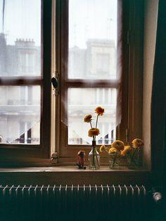 on the  window sill .. X ღɱɧღ ||