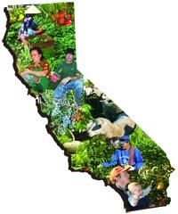 SFPCaliforniacollage_2008